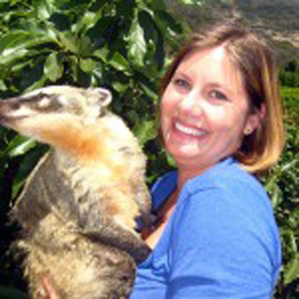 """Wildlife Company Founder Jessica Larios holds """"Cheeya,"""" a coatimundi indigenous to Central and South America. Cheeya is one of many of Larios' animal ambassadors. Larios and some of her animals will visit the Encinitas Library for an interactive """"Good Eats!"""" presentation as part of the library's summer reading program at 4 p.m., June 19. Photo by Lillian Cox"""