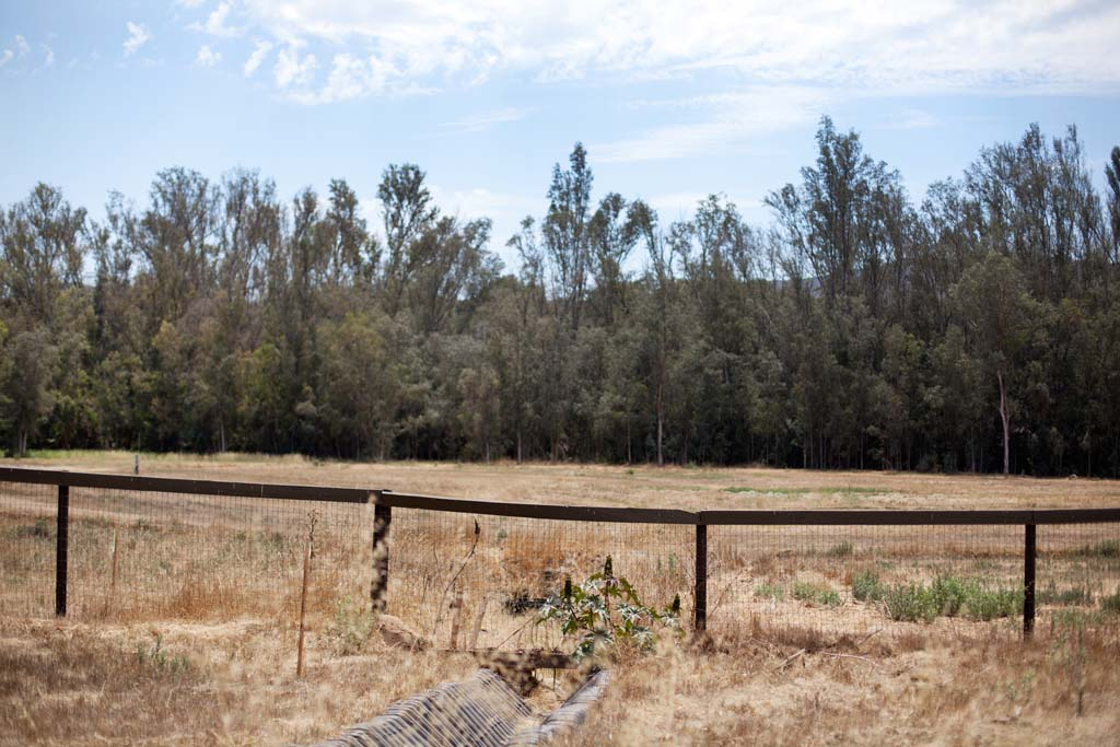 The proposed residential development, Valiano, lies at the crossroads of Mount Whitney Road and Country Club Drive. The property encompasses 209 acres of unincorporated land between the cities of San Marcos and Escondido. Photo by Paige Nelson