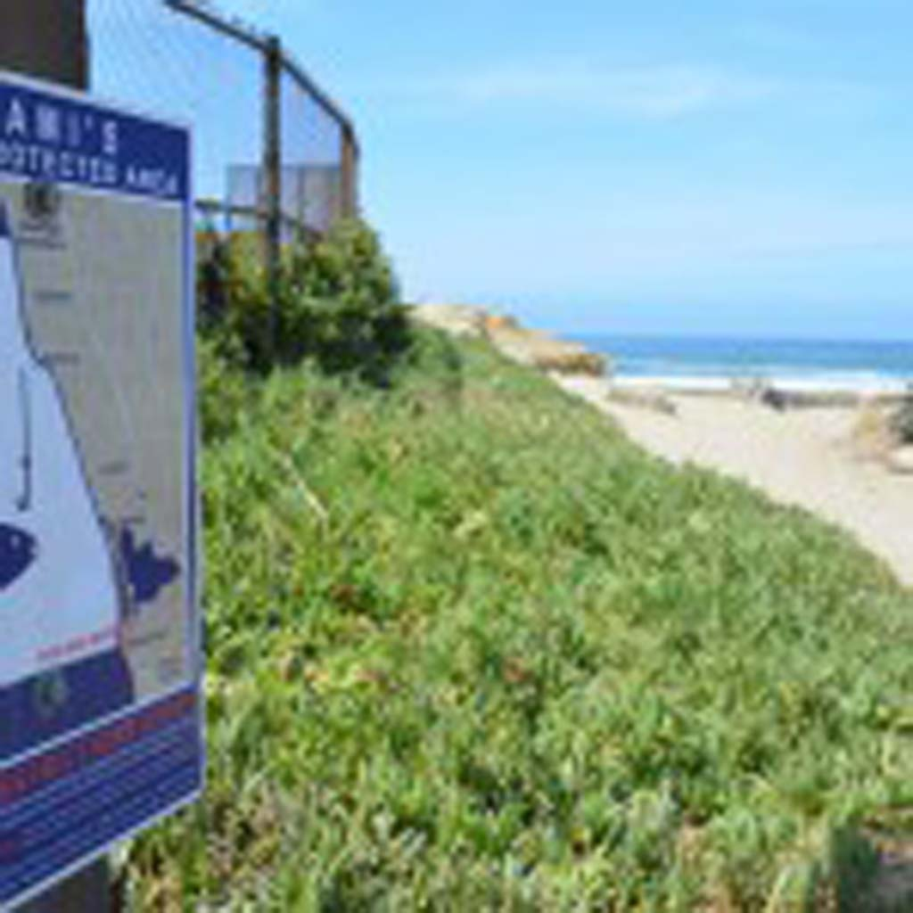 A sign denotes the border for the Swami's Marine Protected Area. The California Coastal Commission cited the threat to marine protected reserves when it denied a 50-year Encinitas and Solana Beach sand replenishment project last week. The decision puts the plan in danger. Photo by Jared Whitlock