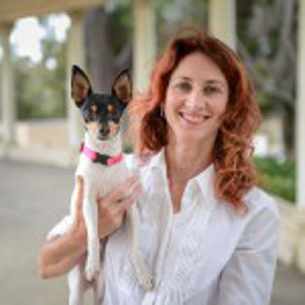"""Jamie Bozi and Emi will demonstrate """"nose work,"""" a search and scenting activity for dogs and people, at the Carlsbad Library Sept. 7. Emi, a fox terrier, holds the unofficial record for the fastest nose work Level I. Photo by Alon David Photography"""