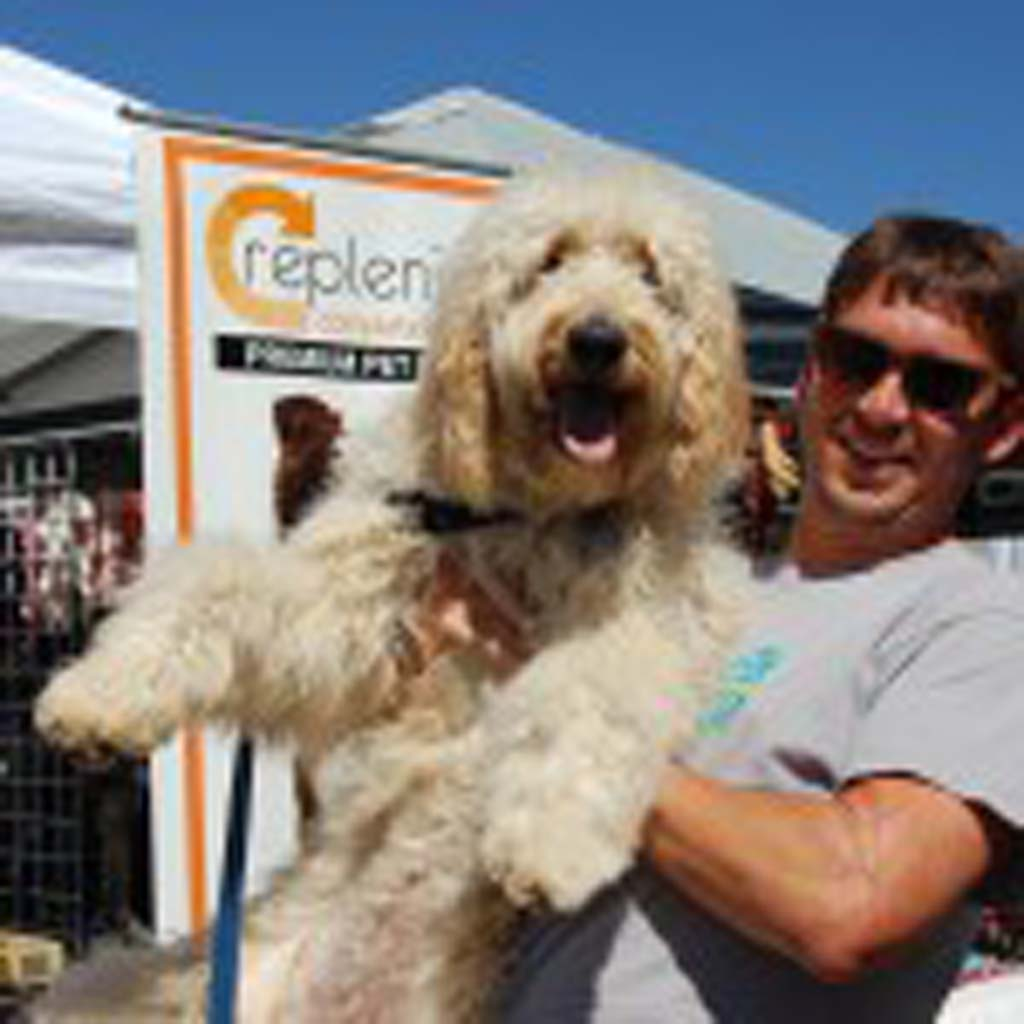 Solana Beach resident Bo Williamson and his 9-month-old goldendoodle, Julep, check out the Fido Festival along 15th Street. Photo by Bianca Kaplanek