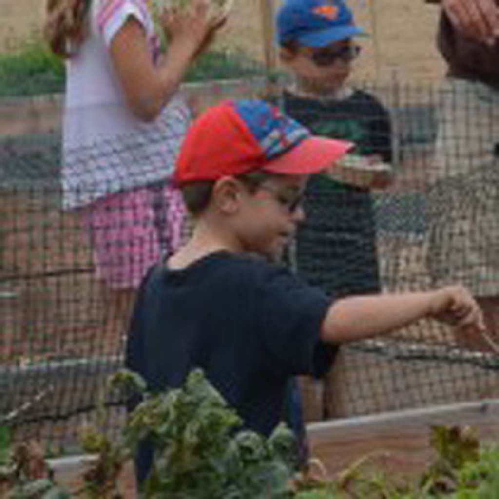 A student checks out planters that are a part of the Ocean Knoll Farm. Photo by Jared Whitlock