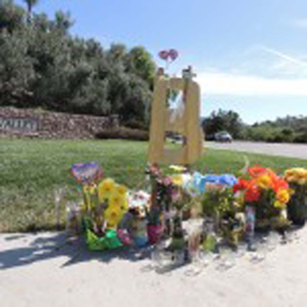 A memorial is set up at the site of a fatal car accident that occurred on Feb. 24. A 34-year-old man was arrested on April 29 in connection with the accident and is facing several charges. Photo by Rachel Stine