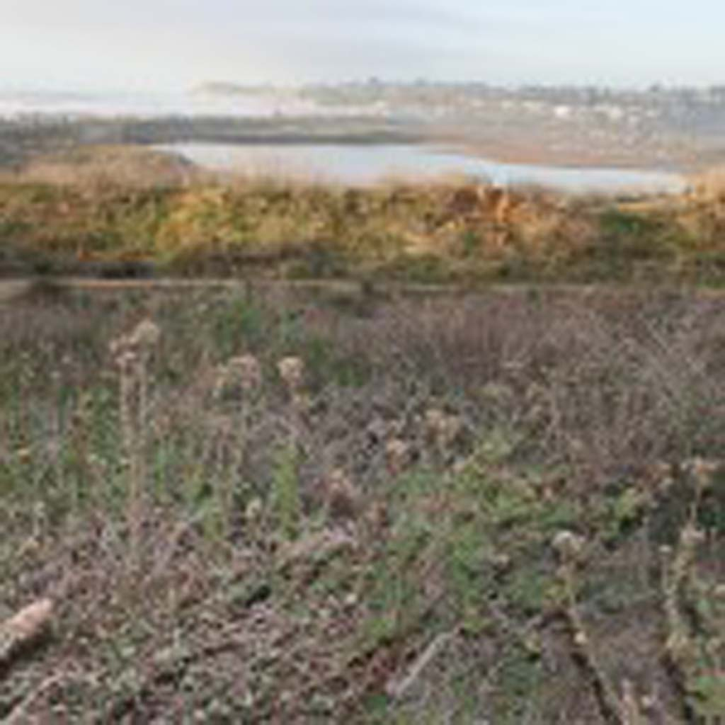 The San Elijo Lagoon Conservancy is available for presentations regarding the anticipated restoration process and environmental report. File photo