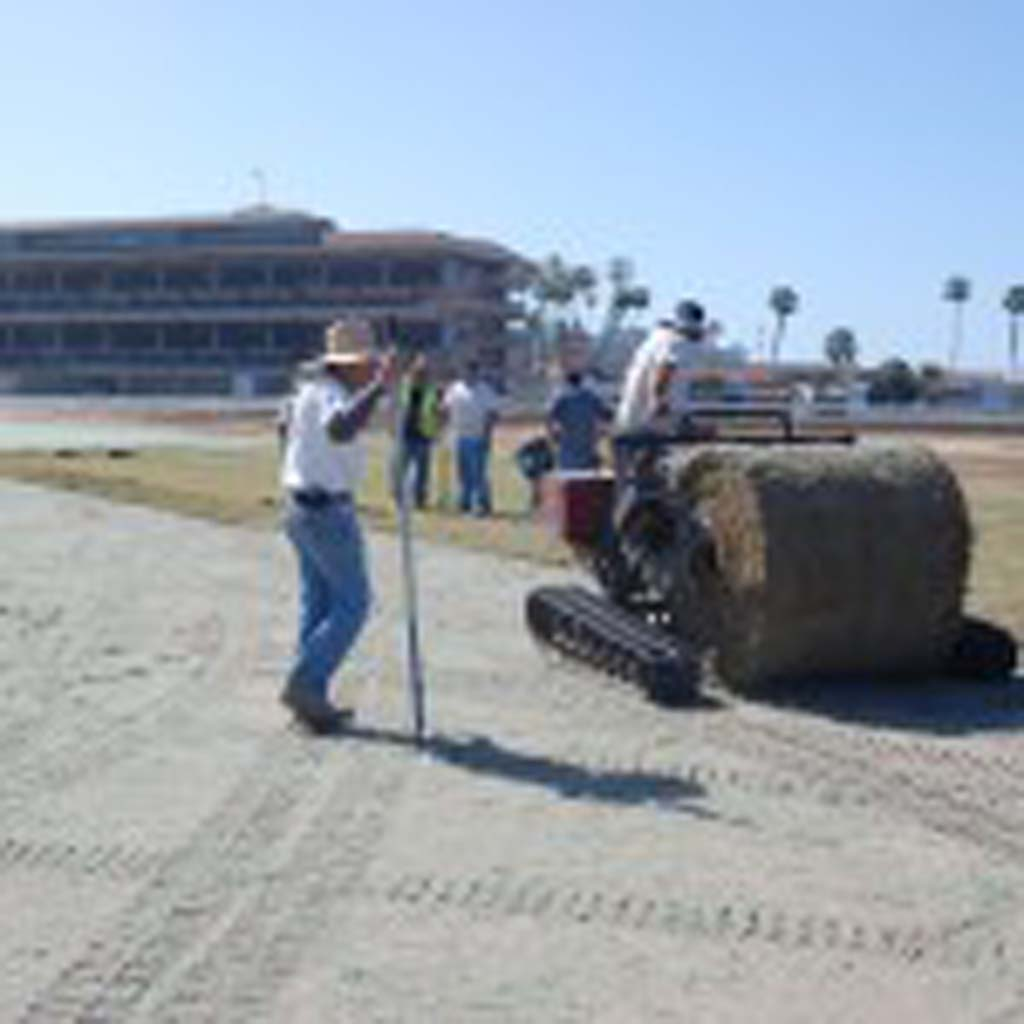 Crews began installing the new turf course at the Del Mar Racetrack in March. Four of the five race-related injuries in the first nine days of the season occurred during races on the track, but officials maintain the course is not to blame. File photo by Bianca Kaplanek
