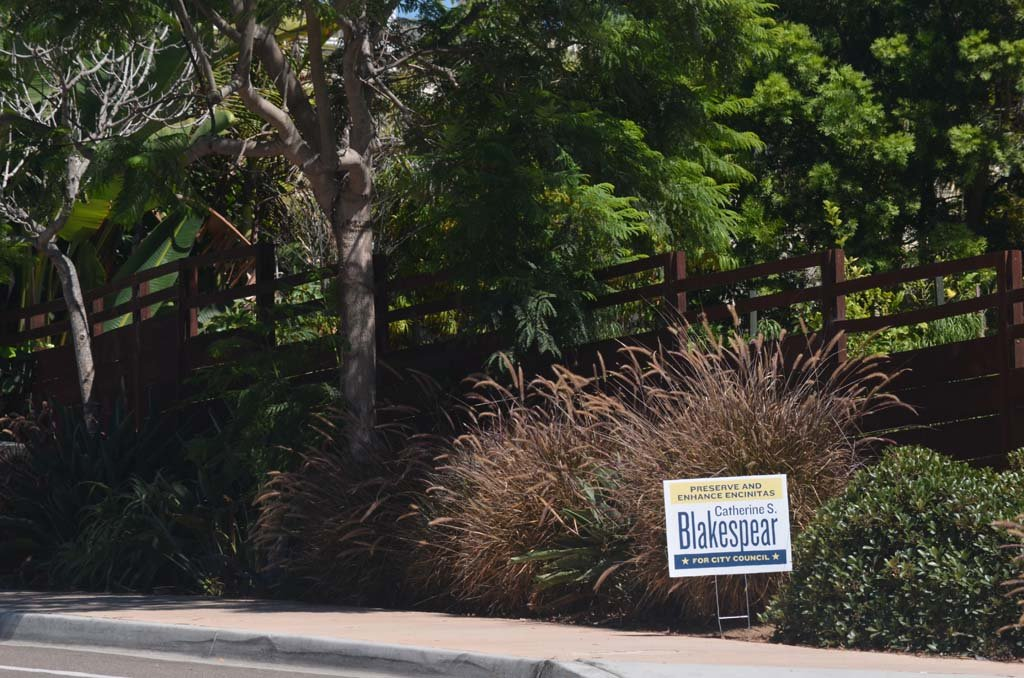 An Encinitas City Council candidate's campaign sign is causing some confusion over city's sign policy. Photo by Tony Cagala