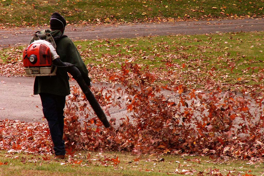 The Encinitas City Council will hear from the environmental commission regarding a leaf blower noise reduction and pollution plan at its meeting Thursday. Courtesy photo