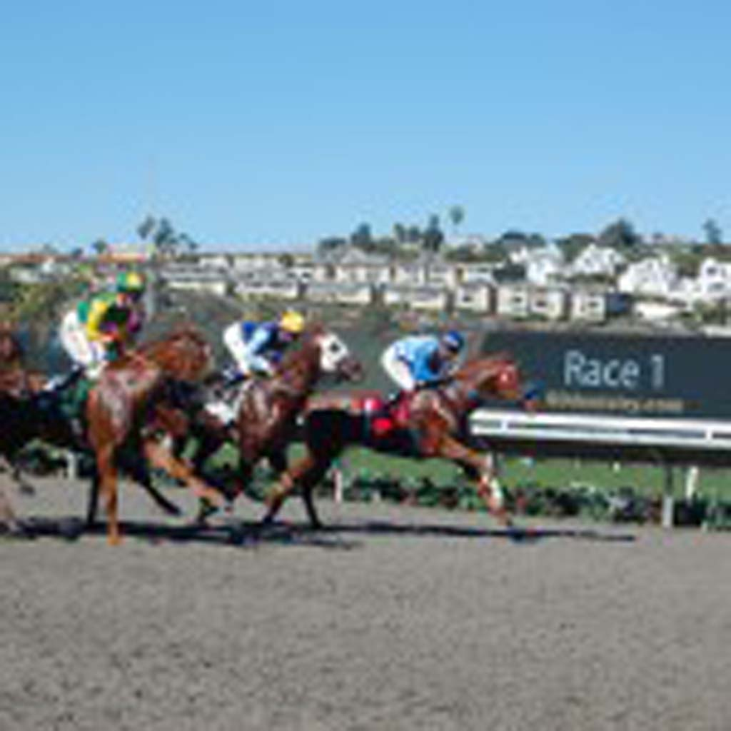 Horses leave the gate for the first race of Del Mar's fall meet this past November. Officials at the seaside venue will soon look into providing stabling on an almost-year-round basis to make up for an anticipated loss of about 1,400 stalls in Southern California in the next few years. Photo by Bianca Kaplanek