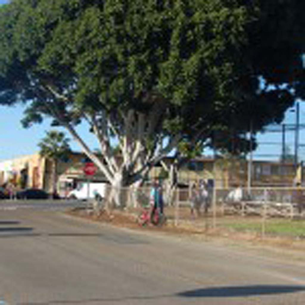 """The city is applying for $2.4 million in transportation grants from the San Diego Association of Governments. Some of the money will be used to install a """"neighborhood circle"""" at the intersection of Cliff Street and North Cedros Avenue. Photo by Bianca Kaplanek"""