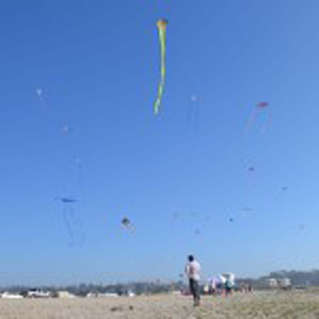 Employees of the Escondido-based BrainStormProducts, LLC send dozens of kites into the sky near South Ponto State Beach in Carlsbad earlier this year. The company test flights kites to ensure quality and ease of use. Photo by Tony Cagla