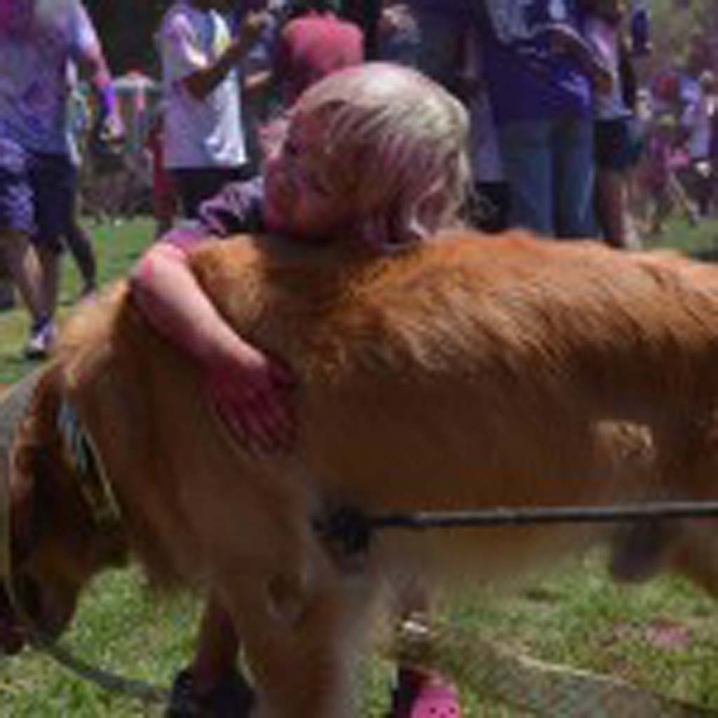 Three-year-old Nick gives a dog a hug at the Festival of Colors. Photo by Tony Cagala