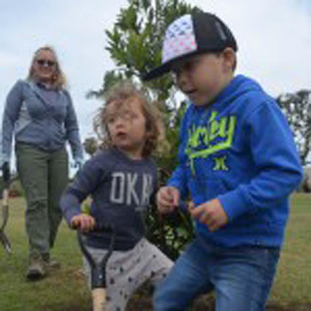 """Caden Lasho, right, with Kai Usher use their feet to pack down dirt around a newly planted Laurel tree, while Dianne Ervin, an arborist with Western ECI watches on. Caden decided to name the tree """"Peaches."""" Photo by Tony Cagala"""