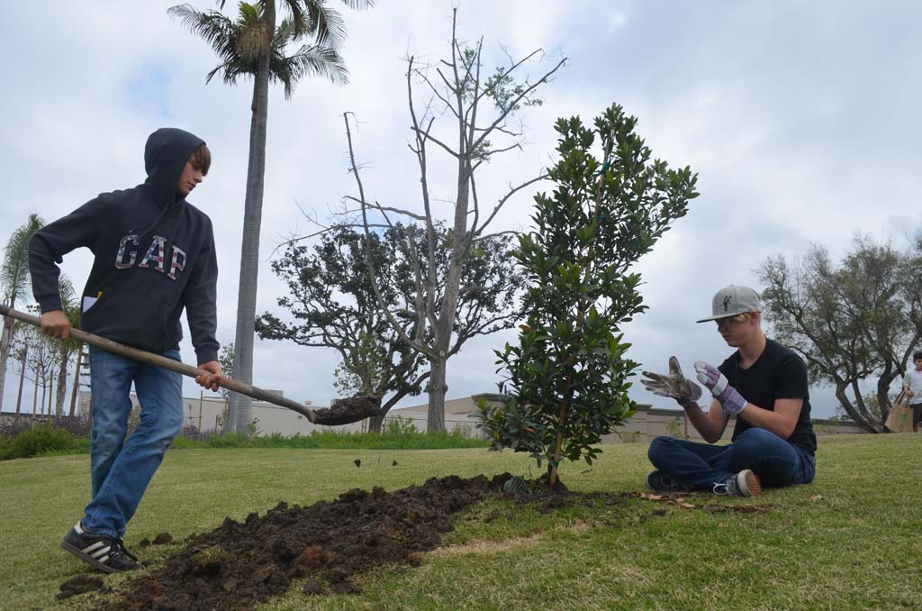 Christian Bretschneider, left, and Brayden Goracke put the finishing touches on their planted tree. Photo by Tony Cagala