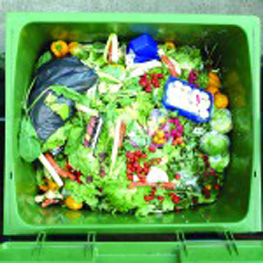 Encinitas is one of the county's first cities to take a public step towards preparing for Assembly Bill 1826, which Gov. Jerry Brown signed in September 2014 and goes into effect April 1, 2016, requiring businesses to recycle their organic waste — lawn clippings, food waste and other similar waste — rather than sending it to landfills. Photo courtesy Wikimedia Commons