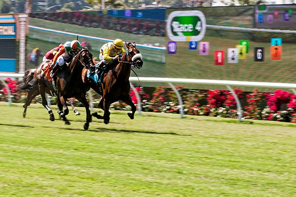 Montego Bay, on right, ridden by jockey Drayden Van Dyke beats Jules Journey ridden by jockey Mike E. Smith in Race 4 during opening day at Del Mar racetrack 2015. Photo by Bill Reilly