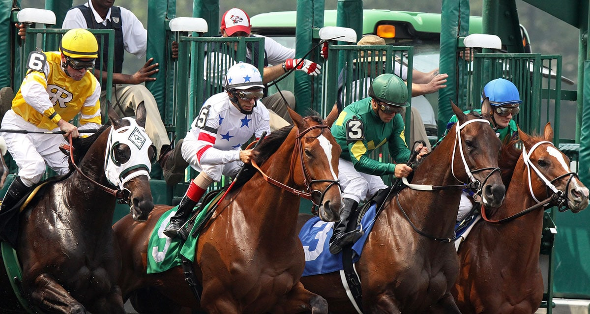 """An incident at Saratoga Race Course in Saratoga Springs, New York, brought new meaning to """"chomping at the bit."""" Courtesy photo"""