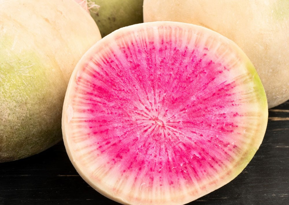 Watermelon radishes should begin in starter trays and transplanted to deeply irrigated soil under shade cloth. Photo via Facebook/San Diego Seed Company