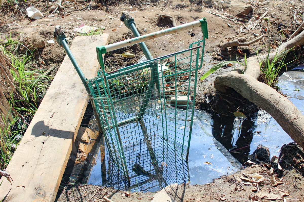 An overturned grocery cart sits in brackish water runoff near a drainage tunnel that connects to Cottonwood Creek Park in Encintias. The stream then continues on to Moonlight Beach. Photo by Jordan P. Ingram
