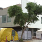 One of three new surge tents is seen in front of the emergency room at Scripps Memorial Hospital Encinitas. The tents were put up in late July to help handle the influx of new COVID-19 patients. Photo courtesy of Scripps Encinitas