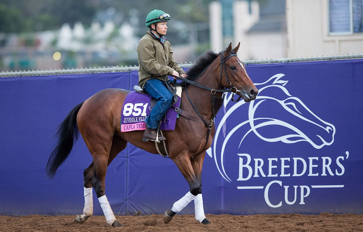 Del Mar will welcome the Breeders' Cup for the second time in four years, last hosting horse racing's world championships in 2017. File photo
