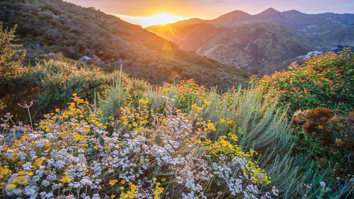 Escondido Creek Conservancy now joins a network of over 450 accredited land trusts across the nation. Photo by Richard Murphy